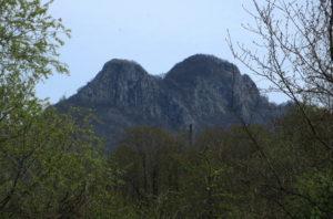 Гора Два брата Кривенковское