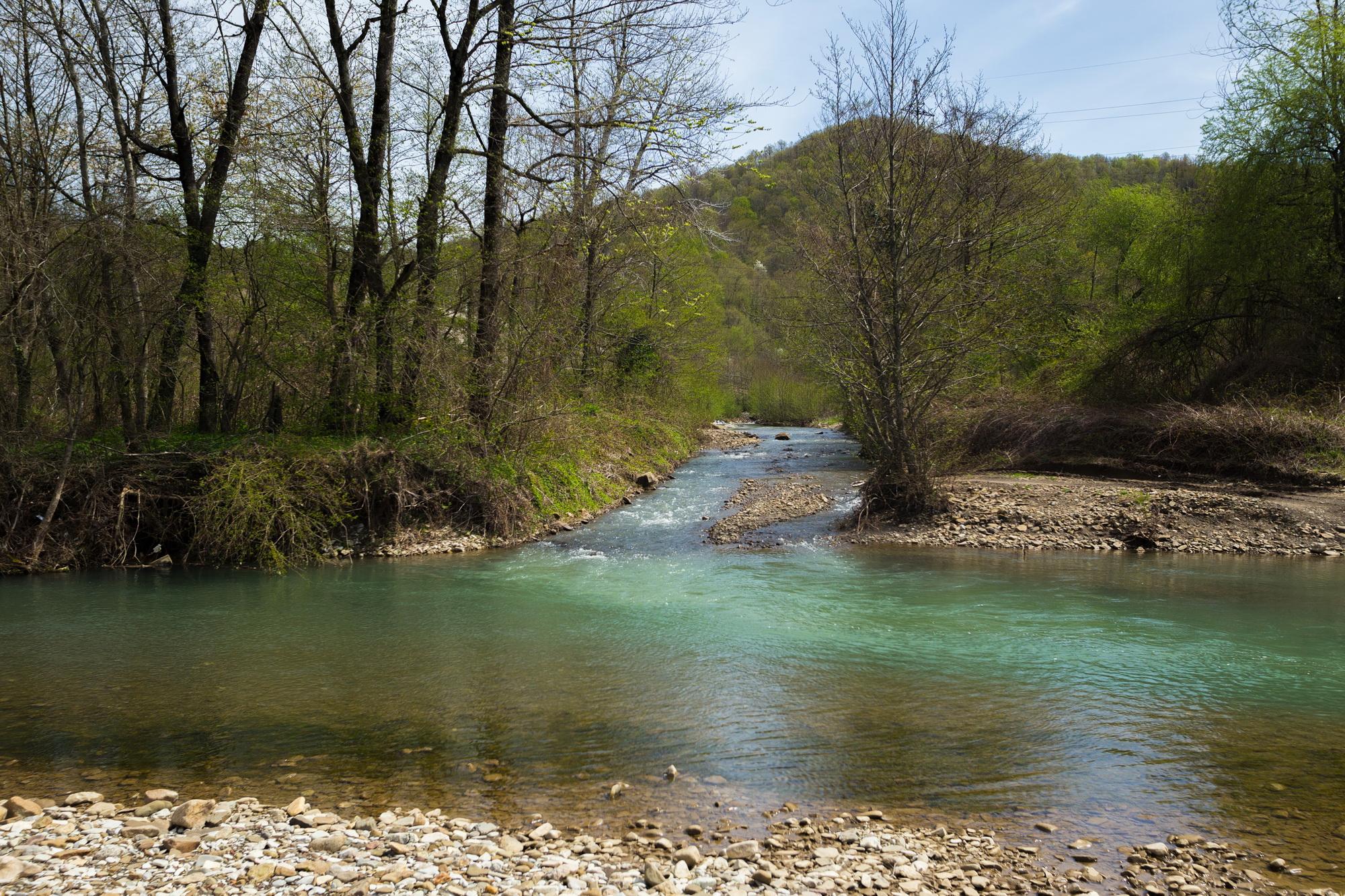 Кривенковское река Букепка